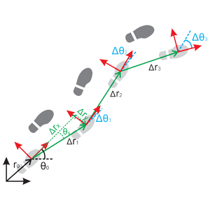 Inertial/Pedestrian Navigation System